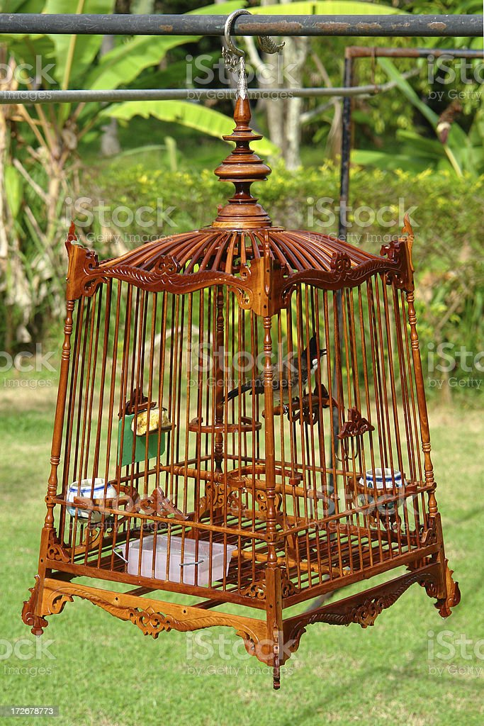 Bird in a beautiful cage royalty-free stock photo