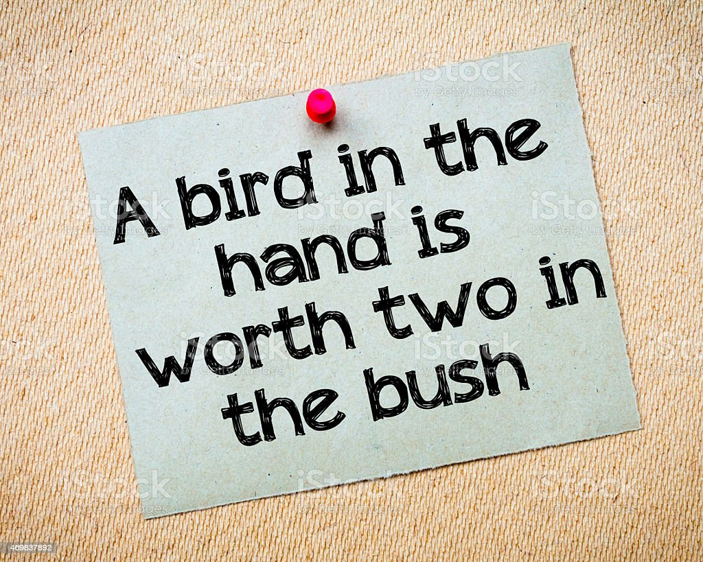 Bird in hand is worth two from the bush stock photo