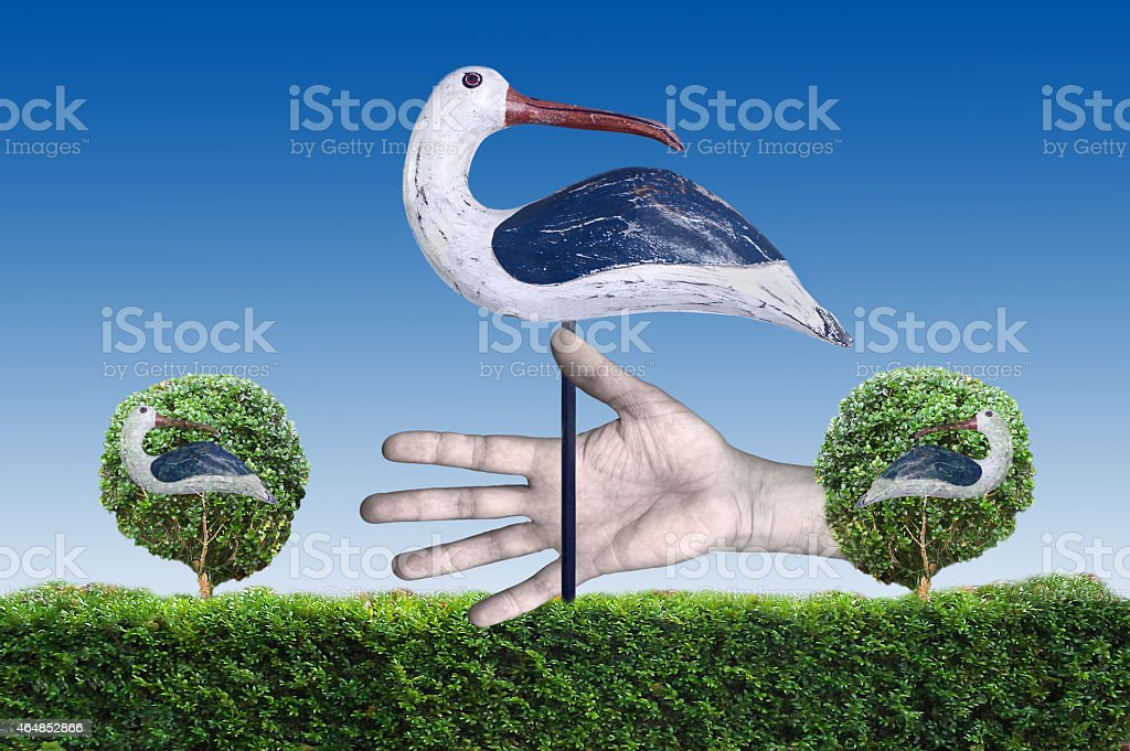 Bird in the Hand is Worth Two in the Bush stock photo