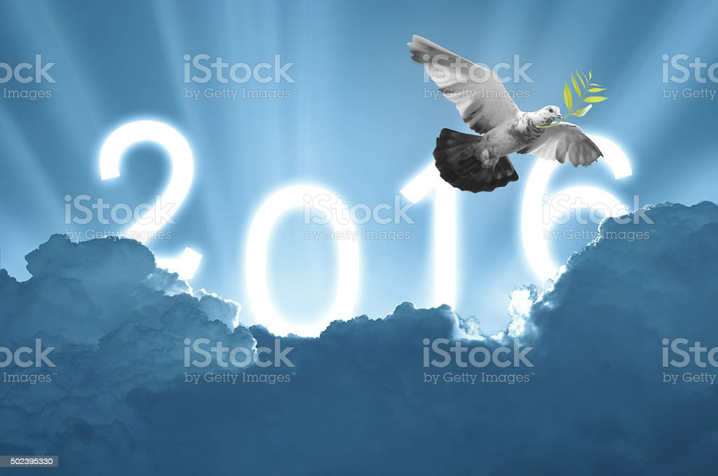 Bird into the air on sky 2016 background stock photo