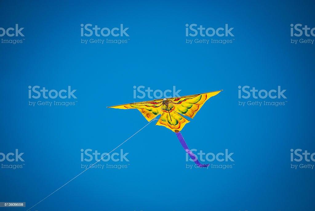 Bird Kites 1 stock photo