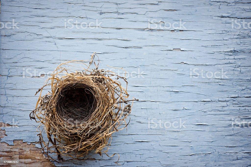 Bird nest on weathered wood stock photo