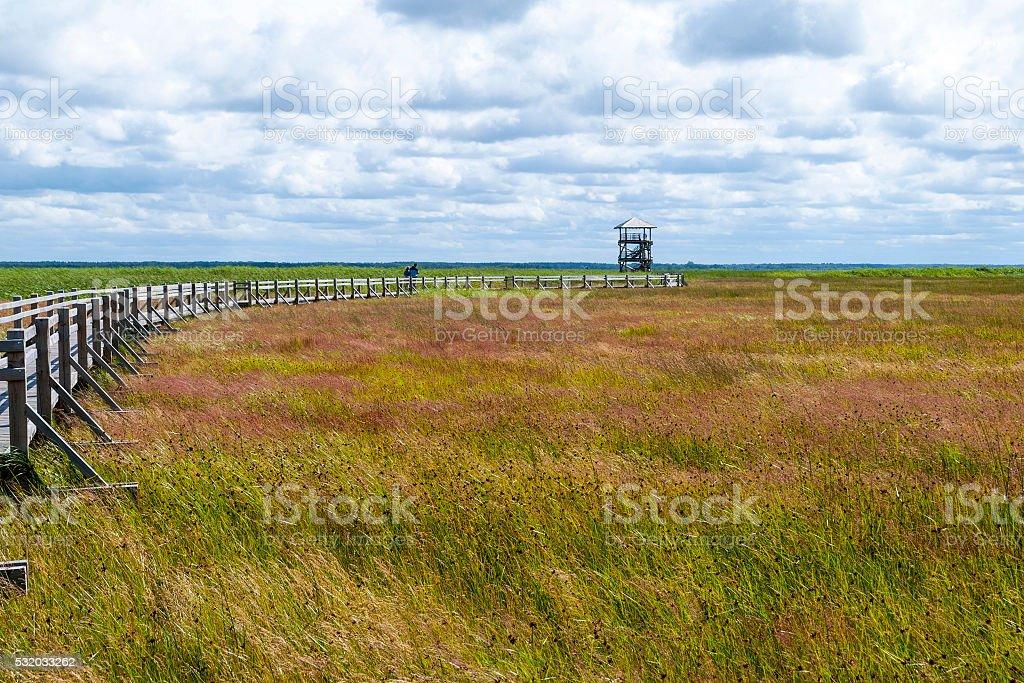 Bird observatory at Liepaja lake, Latvia stock photo