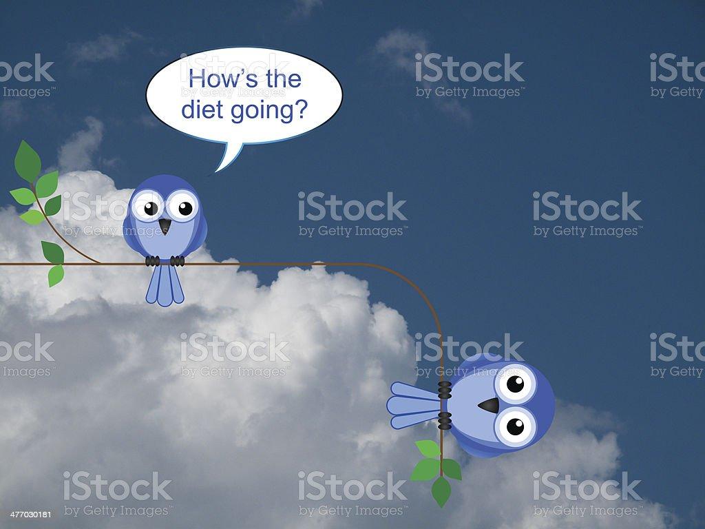 Bird on a diet stock photo
