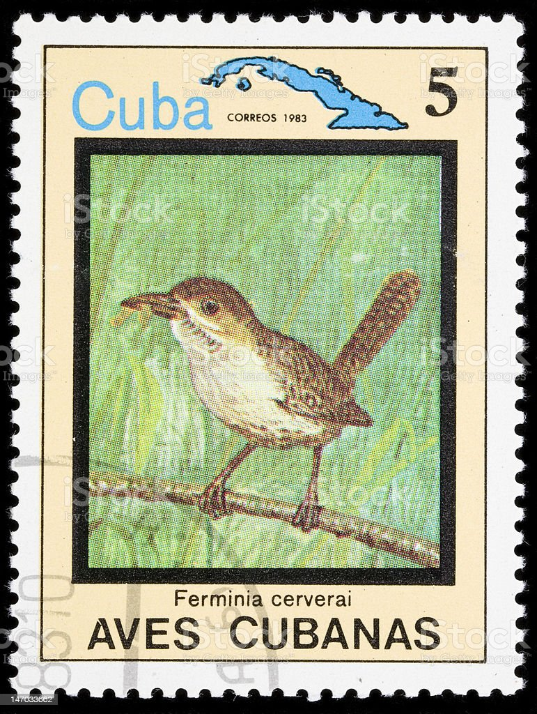 Bird on a postage stamp stock photo
