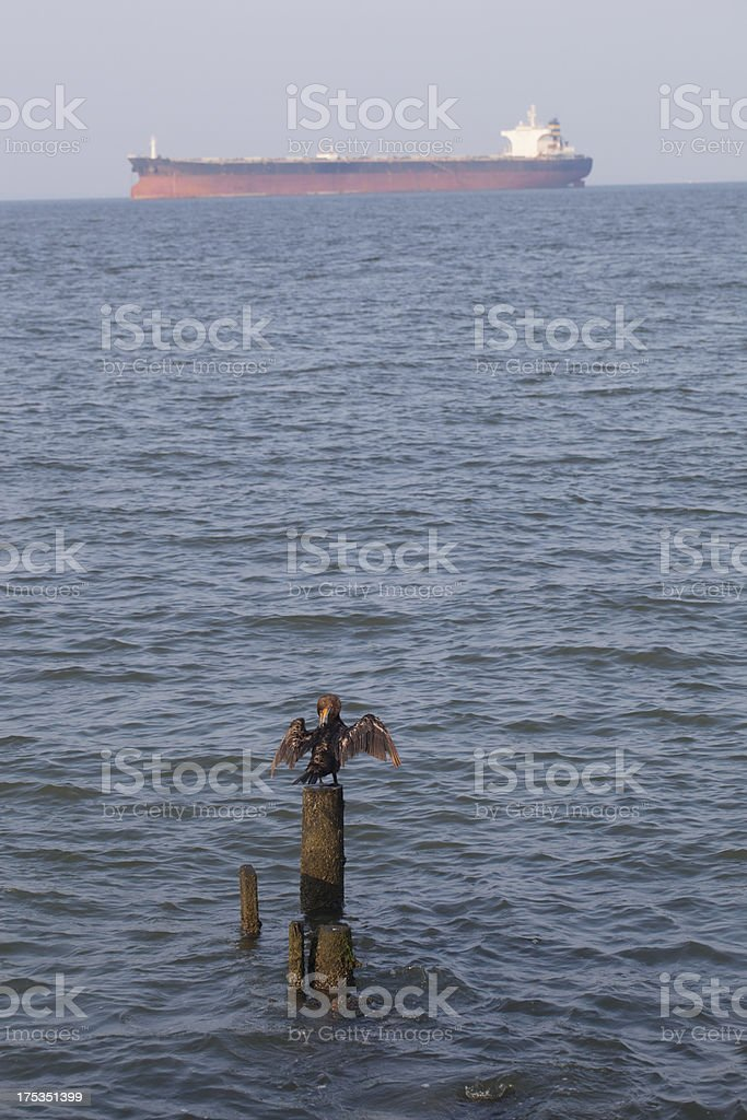 Bird on Post Flagging Down Big Ship royalty-free stock photo