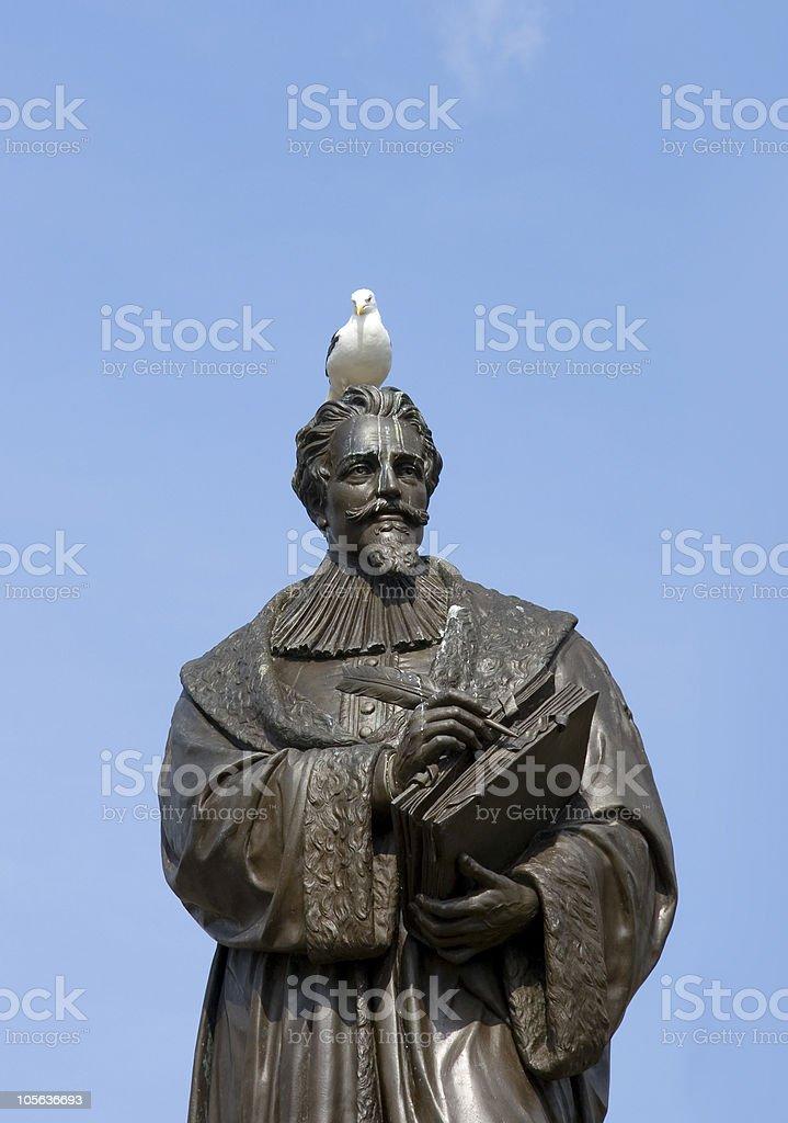 Bird on the head royalty-free stock photo