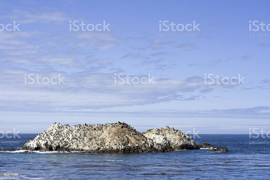 Bird Rock royalty-free stock photo