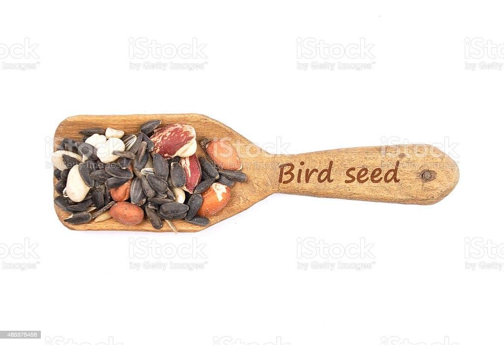 Bird seed on shovel stock photo