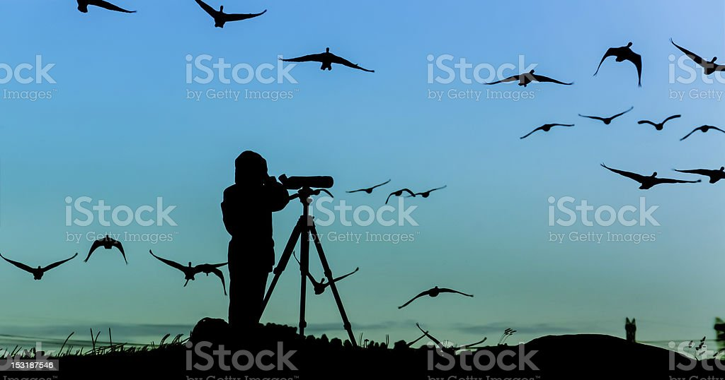 Bird Watcher Silhouette stock photo