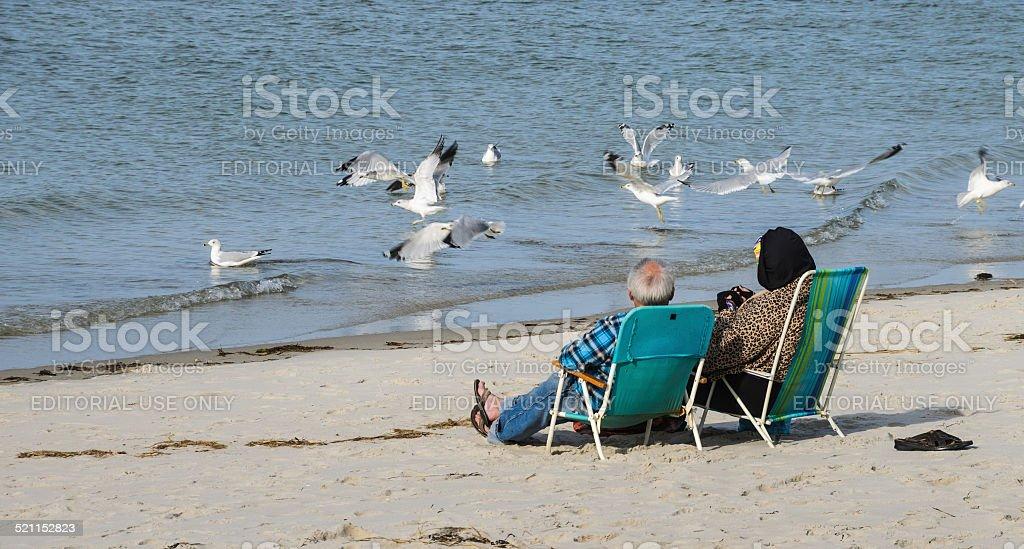Bird Watching stock photo