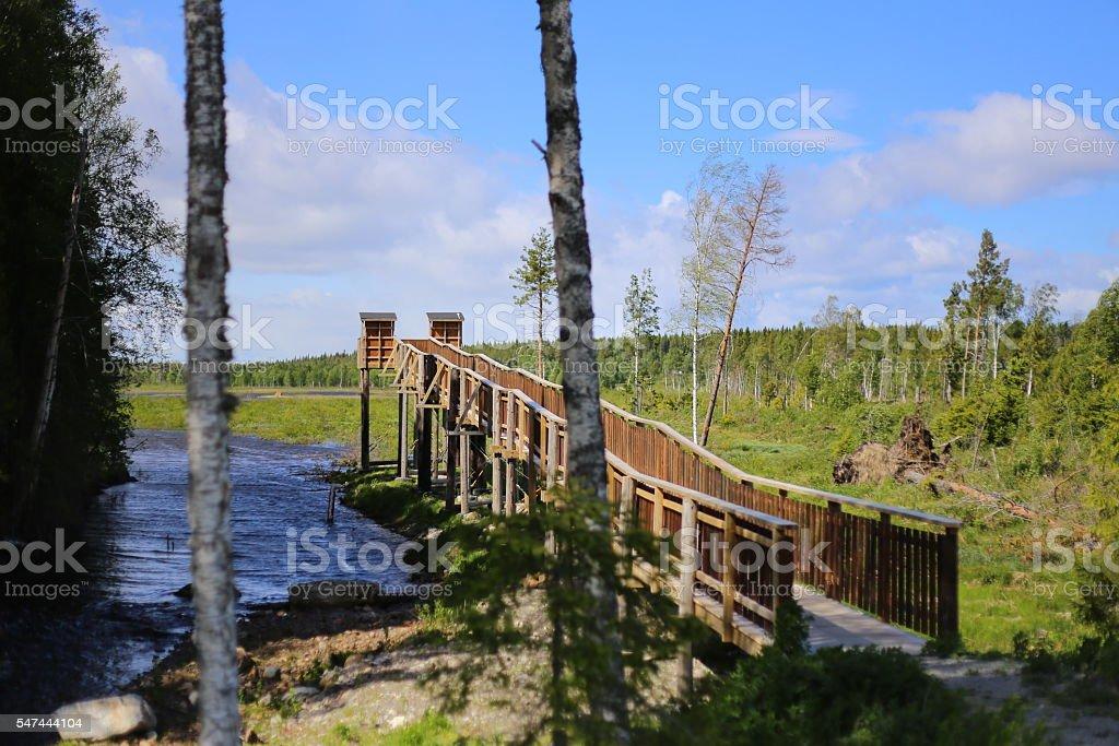Bird watching platform near Tullingsaas in Sweden stock photo