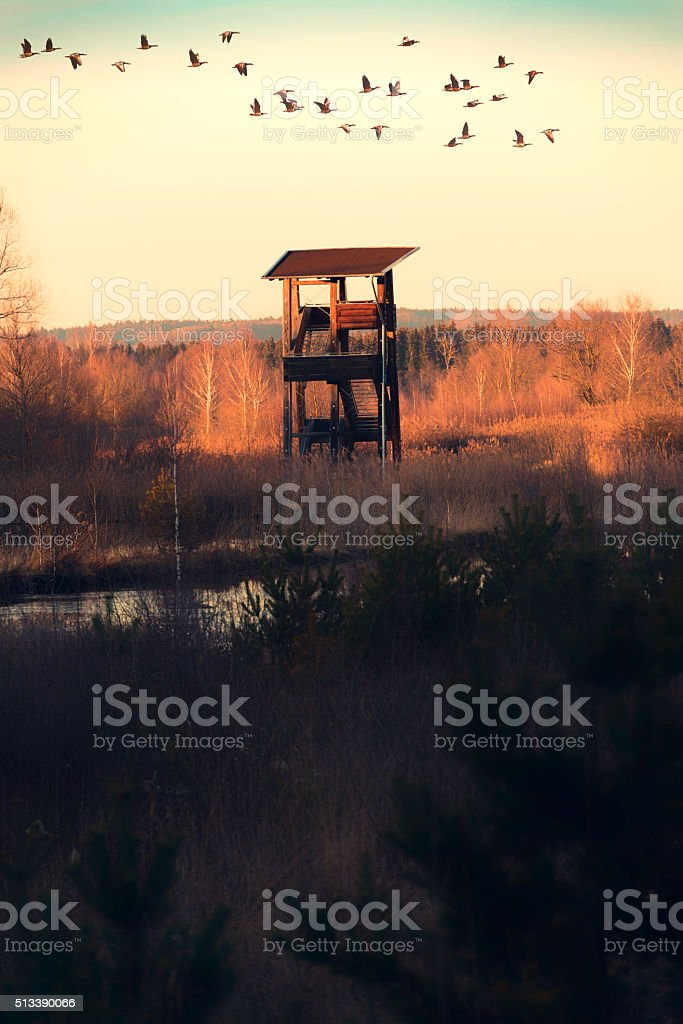 Bird watching tower in Upper Austria stock photo