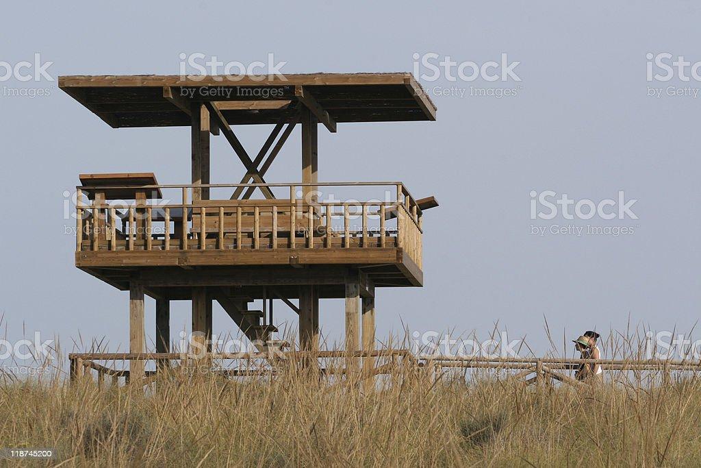 Bird Watching tower. Mirador de Madera stock photo