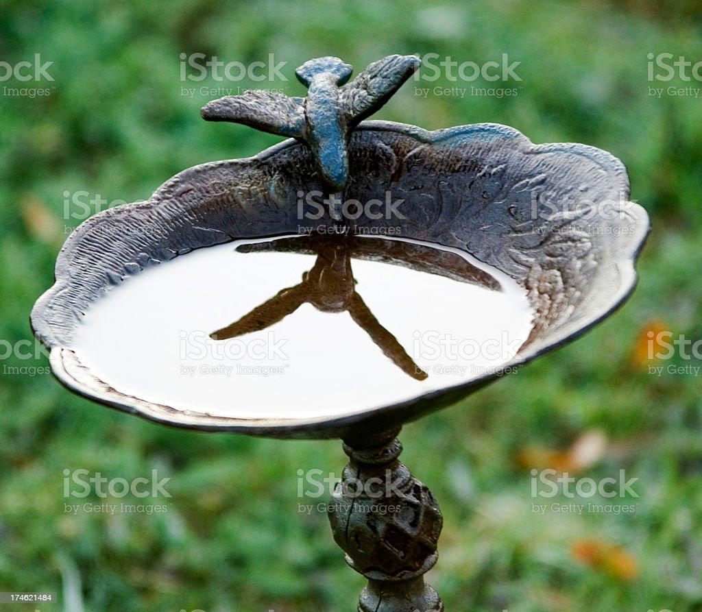 birdbath with stone bird reflection royalty-free stock photo