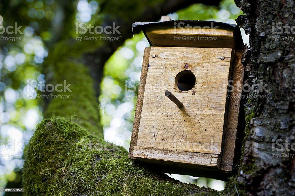 birdbox royalty-free stock photo