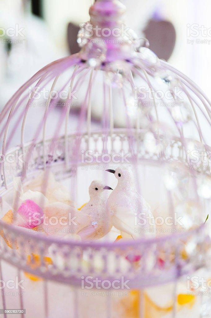 Birdcage decoration in wedding stock photo