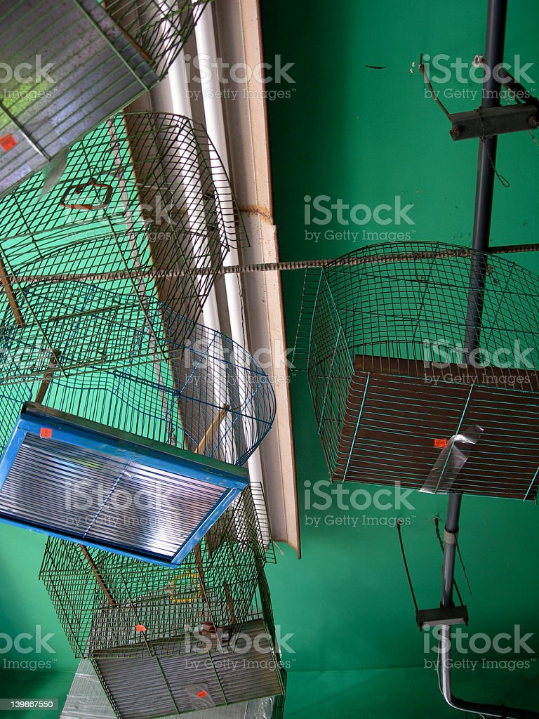 Birdcages royalty-free stock photo