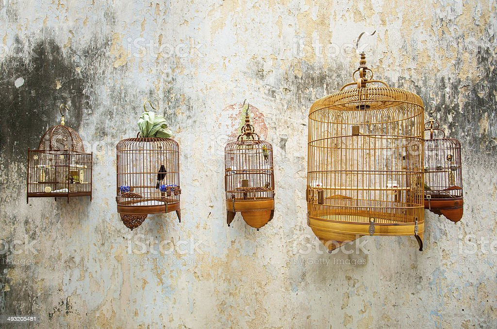Birdcages with the birds hanging stock photo