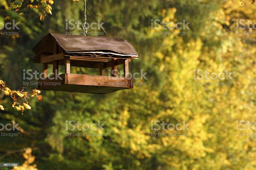 Birdfeeder royalty-free stock photo