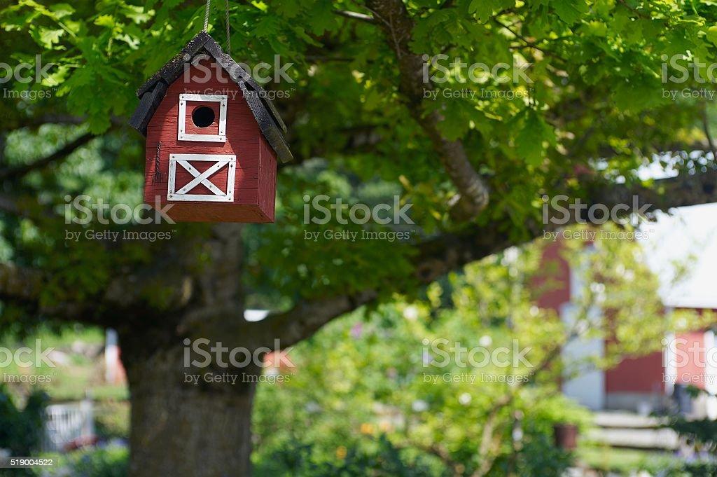 Birdhouse hanging from tree stock photo