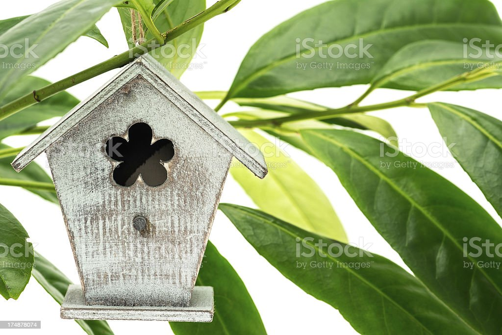 Birdhouse hanging in a tree royalty-free stock photo
