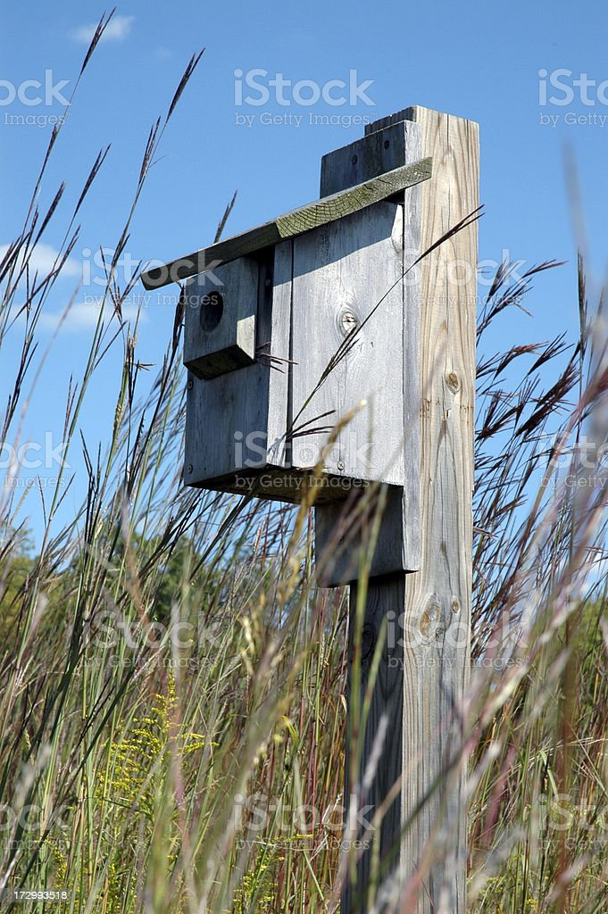 Birdhouse in Grass royalty-free stock photo