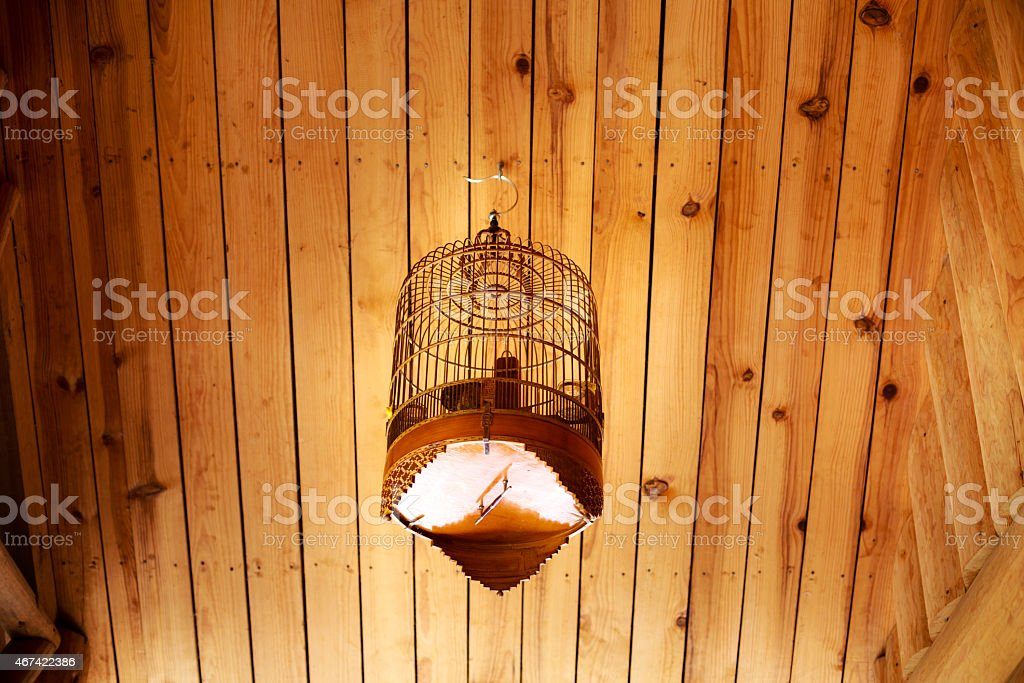 Birdhouse in small house stock photo