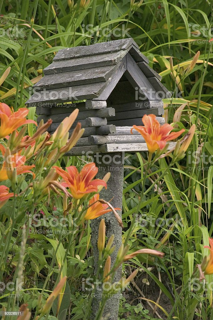 Birdhouse in Tiger Lilys royalty-free stock photo