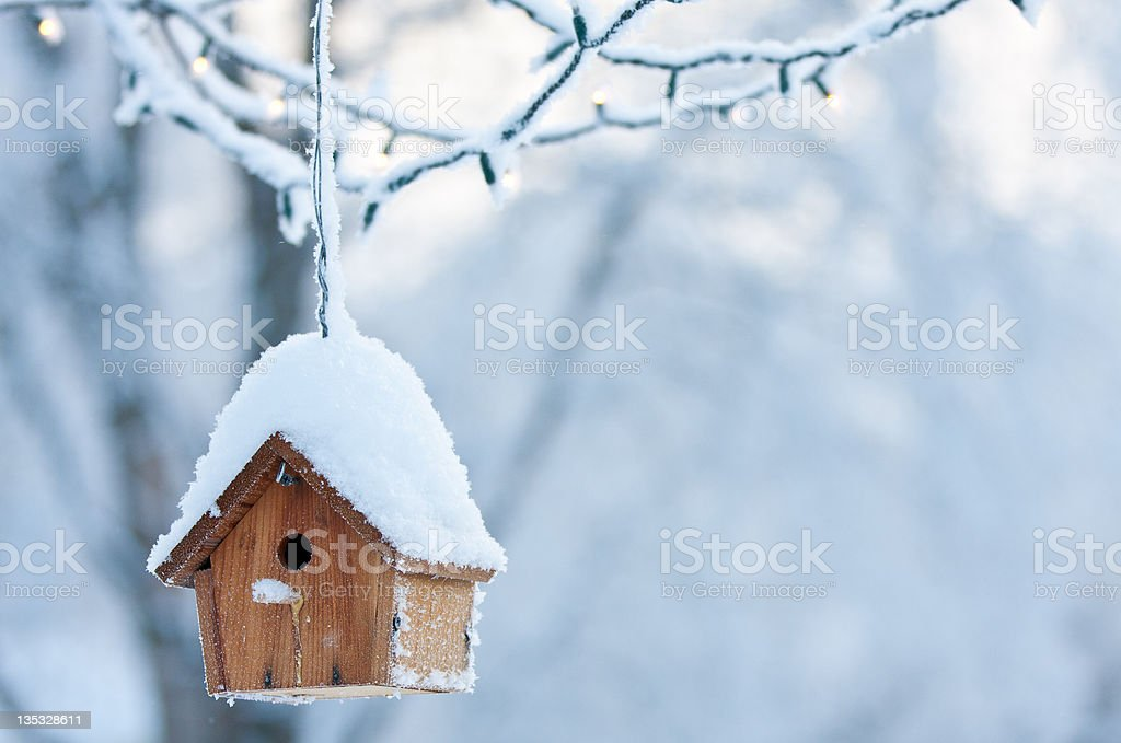Birdhouse in Winter stock photo