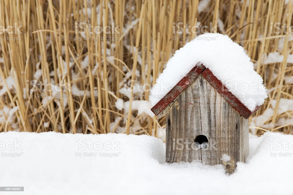 Birdhouse in Winter Snow and Sun royalty-free stock photo
