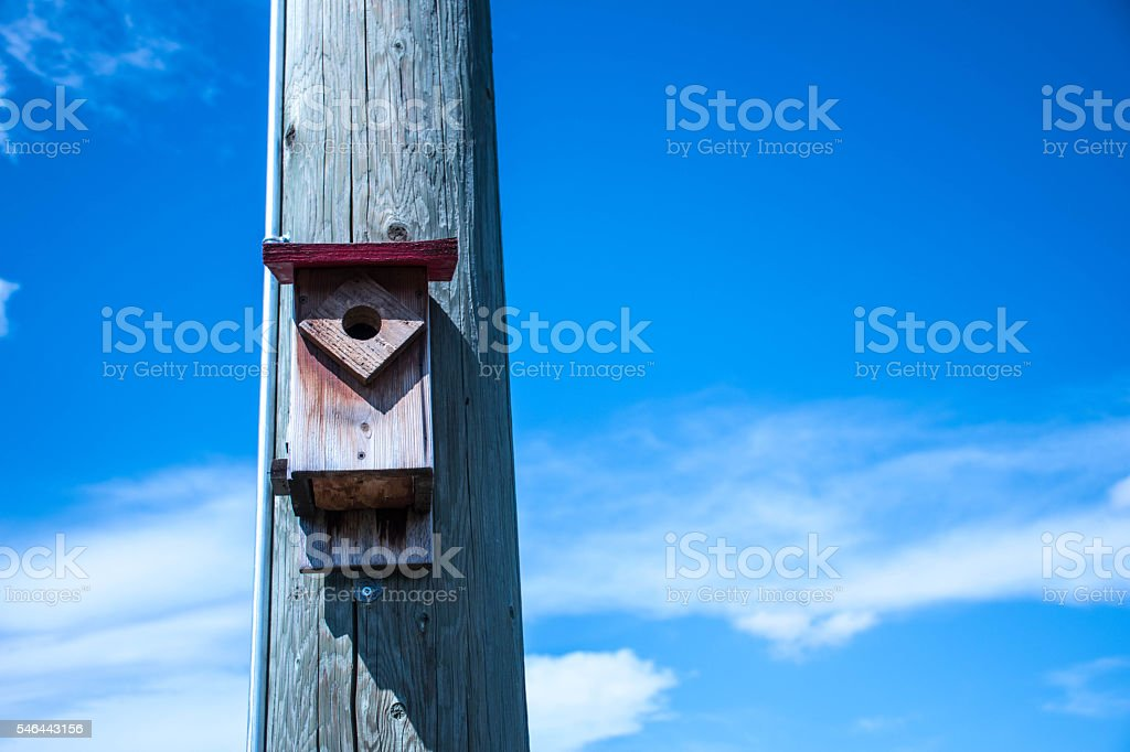 Birdhouse on pole1 stock photo