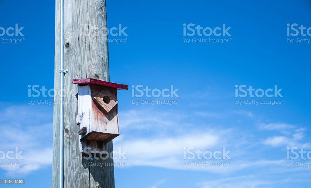 Birdhouse on pole2 stock photo