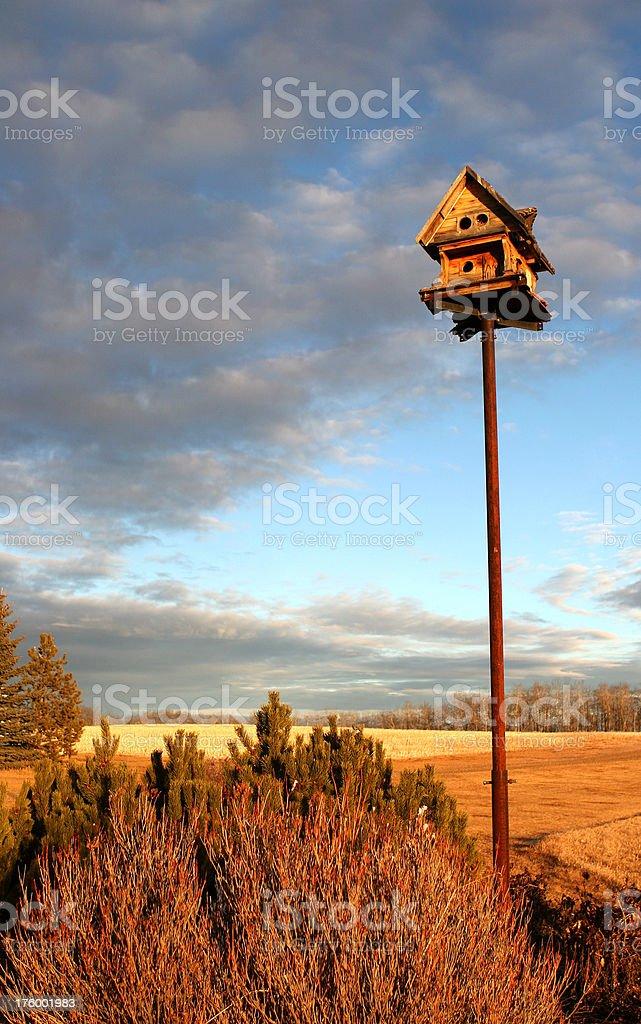 Birdhouse on the farm royalty-free stock photo