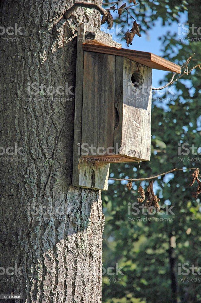 Birdhouse on Tree royalty-free stock photo