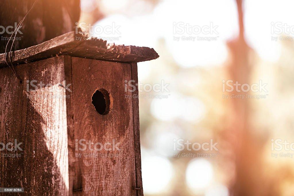 Birdhouse stock photo