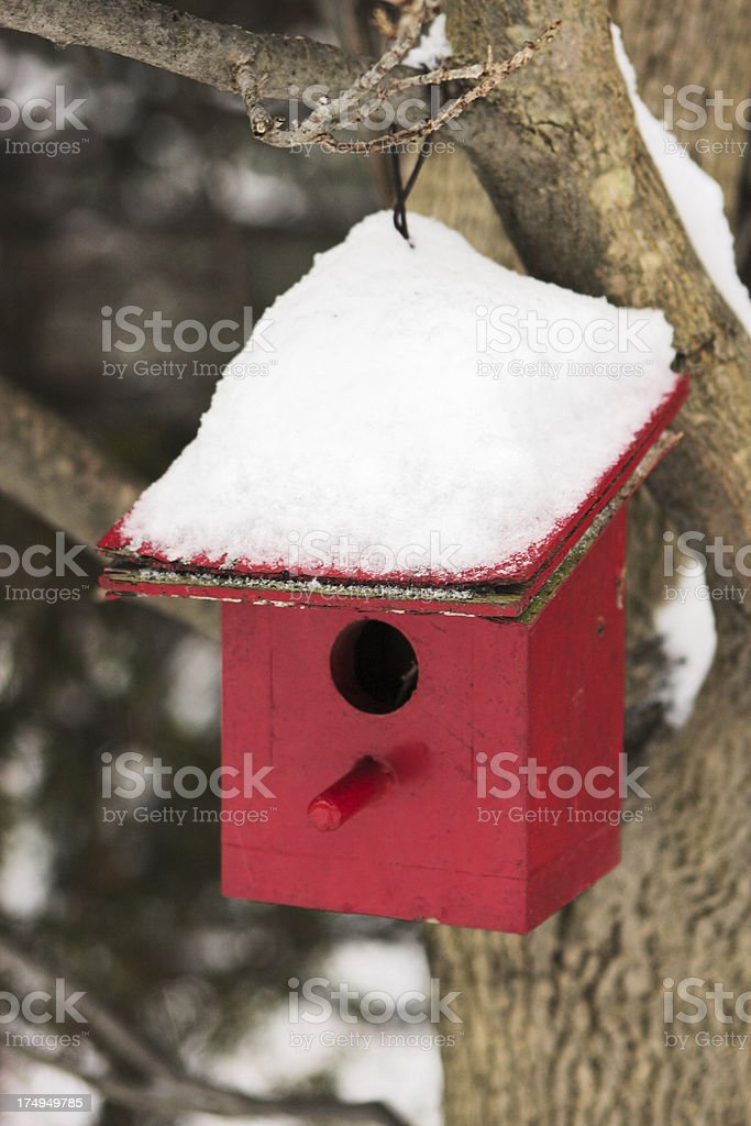 Birdhouse Winter Snow stock photo