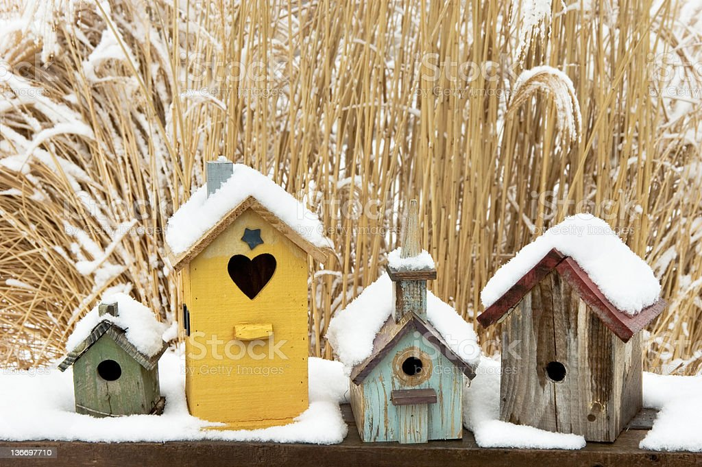 Birdhouses in Snow, Rustic, Weathered, and Colorful stock photo