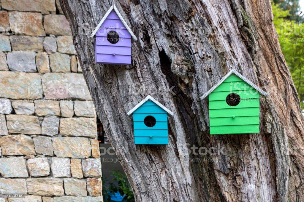 Birdhouses on tree stock photo