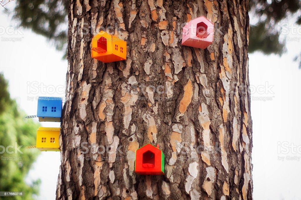 birdhouses stock photo