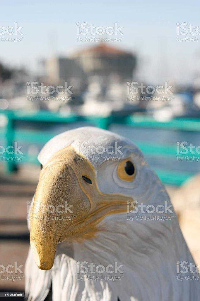 Bird's Eye View stock photo