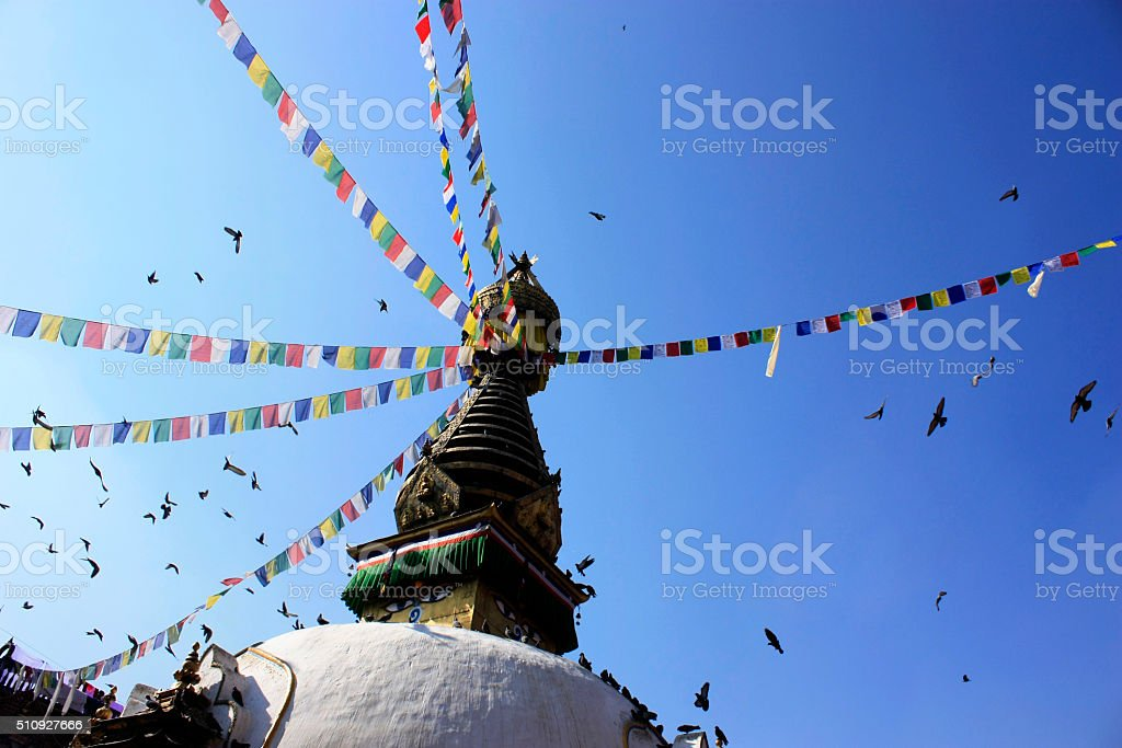 birds flying across the prayer flags of temple, in nepal, stock photo
