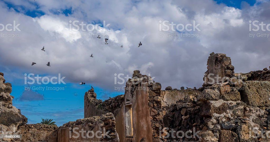 Birds flying over ruin La Oliva Fuerteventura  Canary Islands Spain stock photo