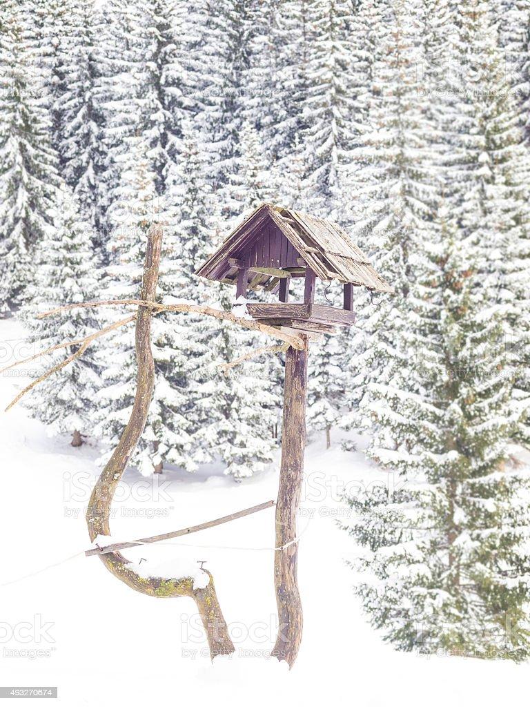 Birds house in winter  at Pokljuka, Slovenia stock photo