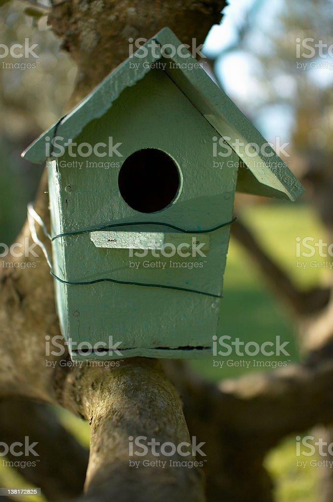 Bird's house royalty-free stock photo