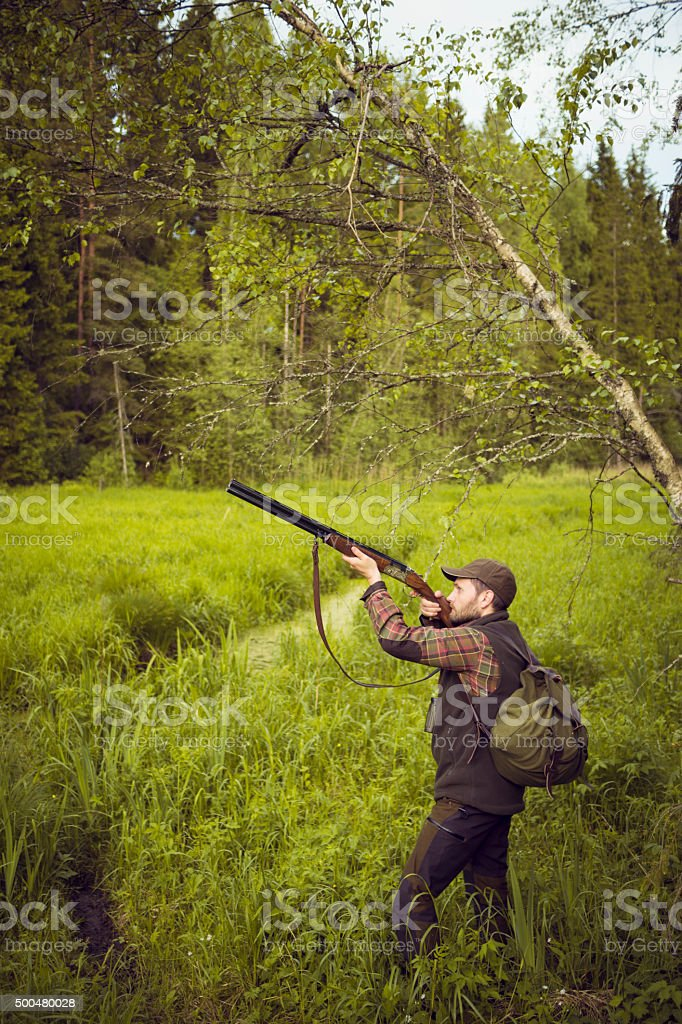 Birds Hunter Pointing Gun to the Sky in a Fen stock photo