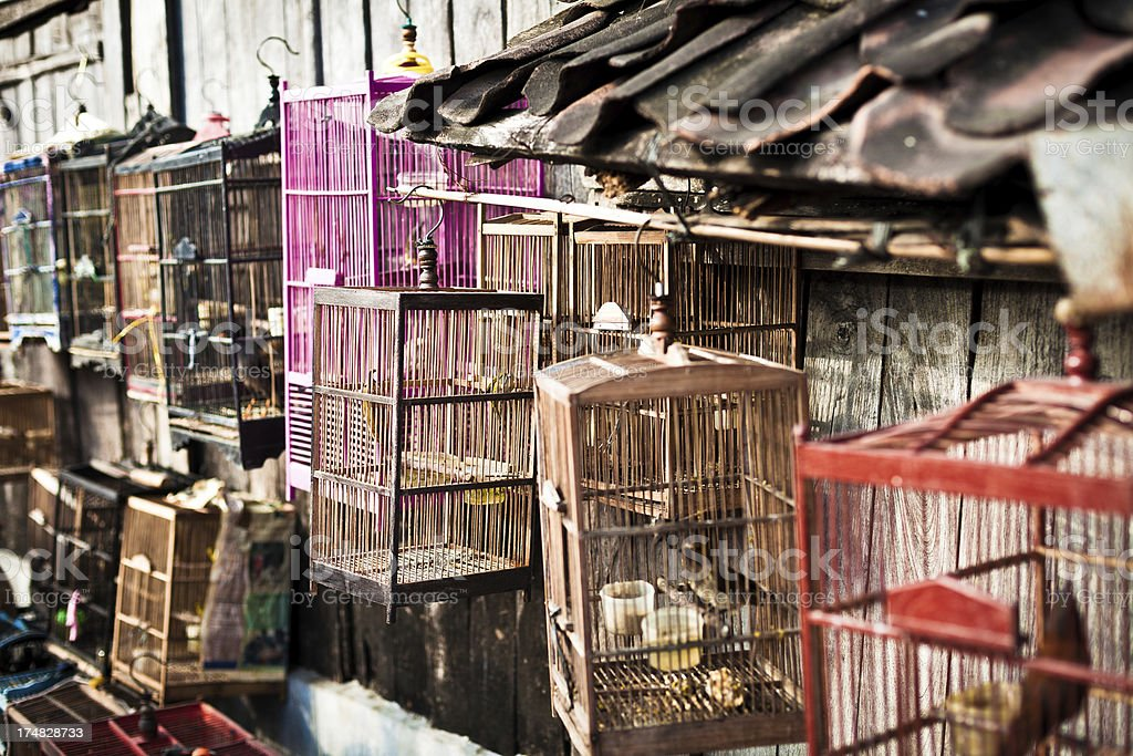 Birds in Cages, Indonesian Market royalty-free stock photo