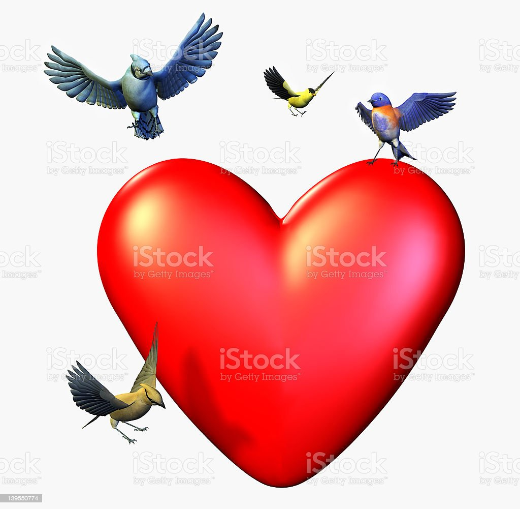 Birds Landing on a Heart - includes clipping path stock photo