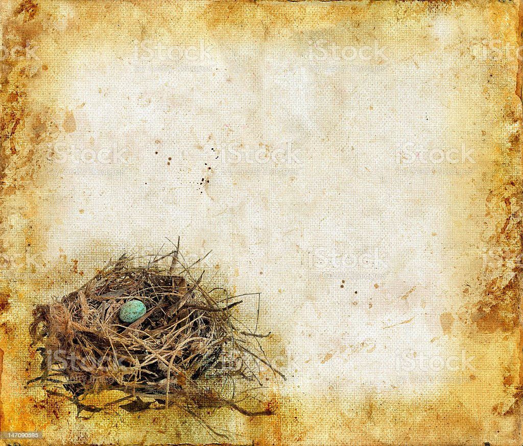 Birds Nest on a Grunge Background royalty-free stock photo