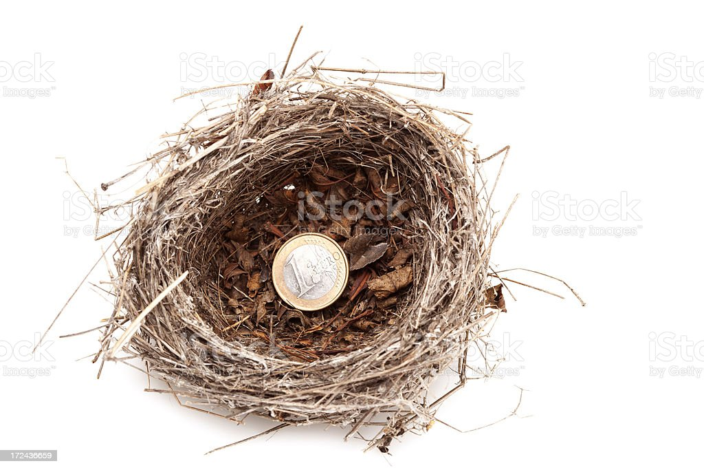 Bird's nest with  coin royalty-free stock photo